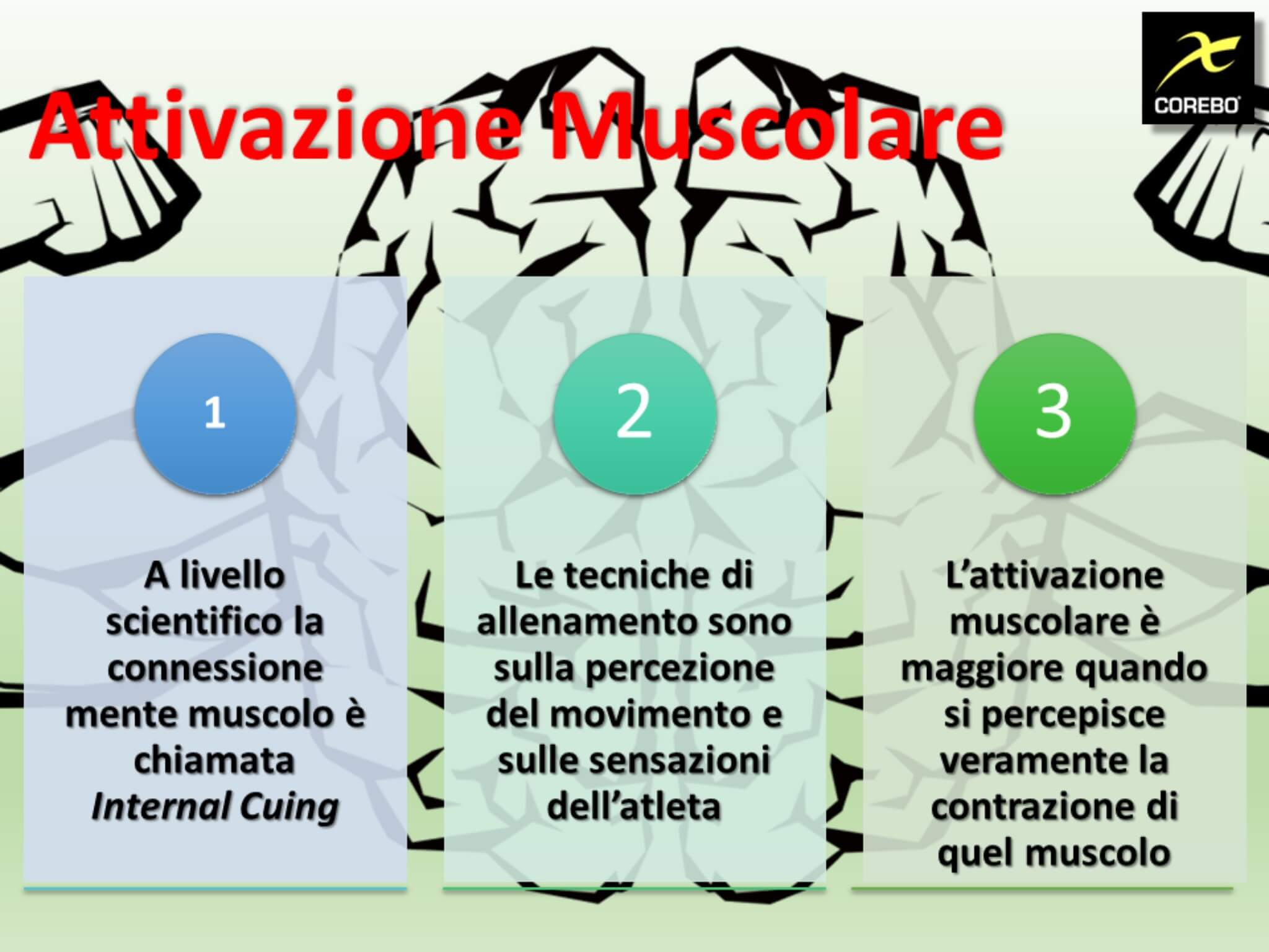 attivazione mente muscolo