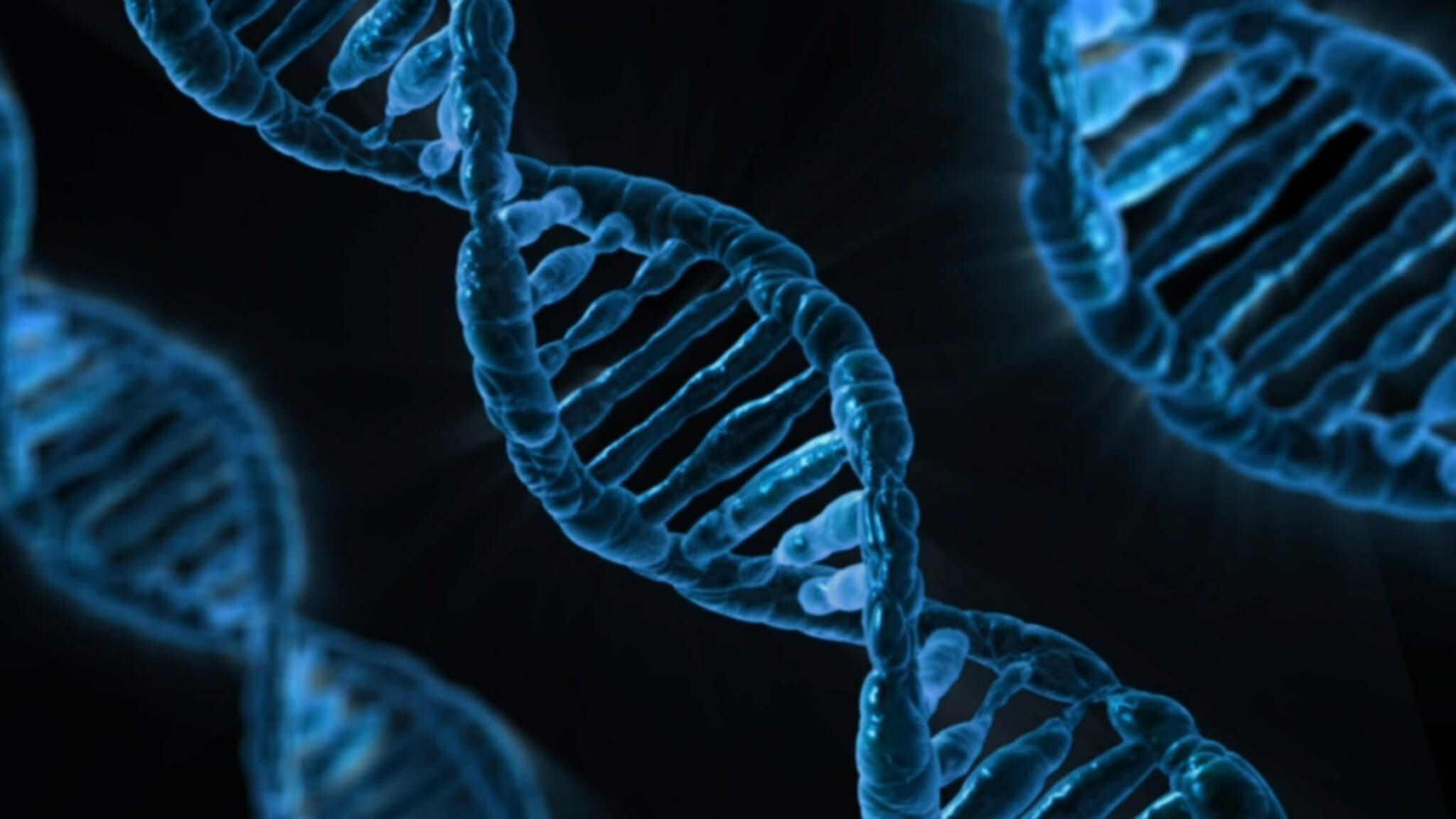 Nutrigenetica e nutrigenomica, cosa significano queste parole?