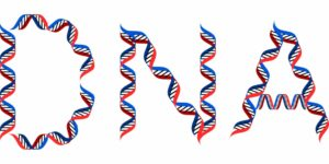 DNA: introduzione ai concetti di base della Genetica