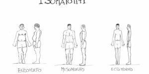 Somatotipo e Somatocarta nella composizione corporea