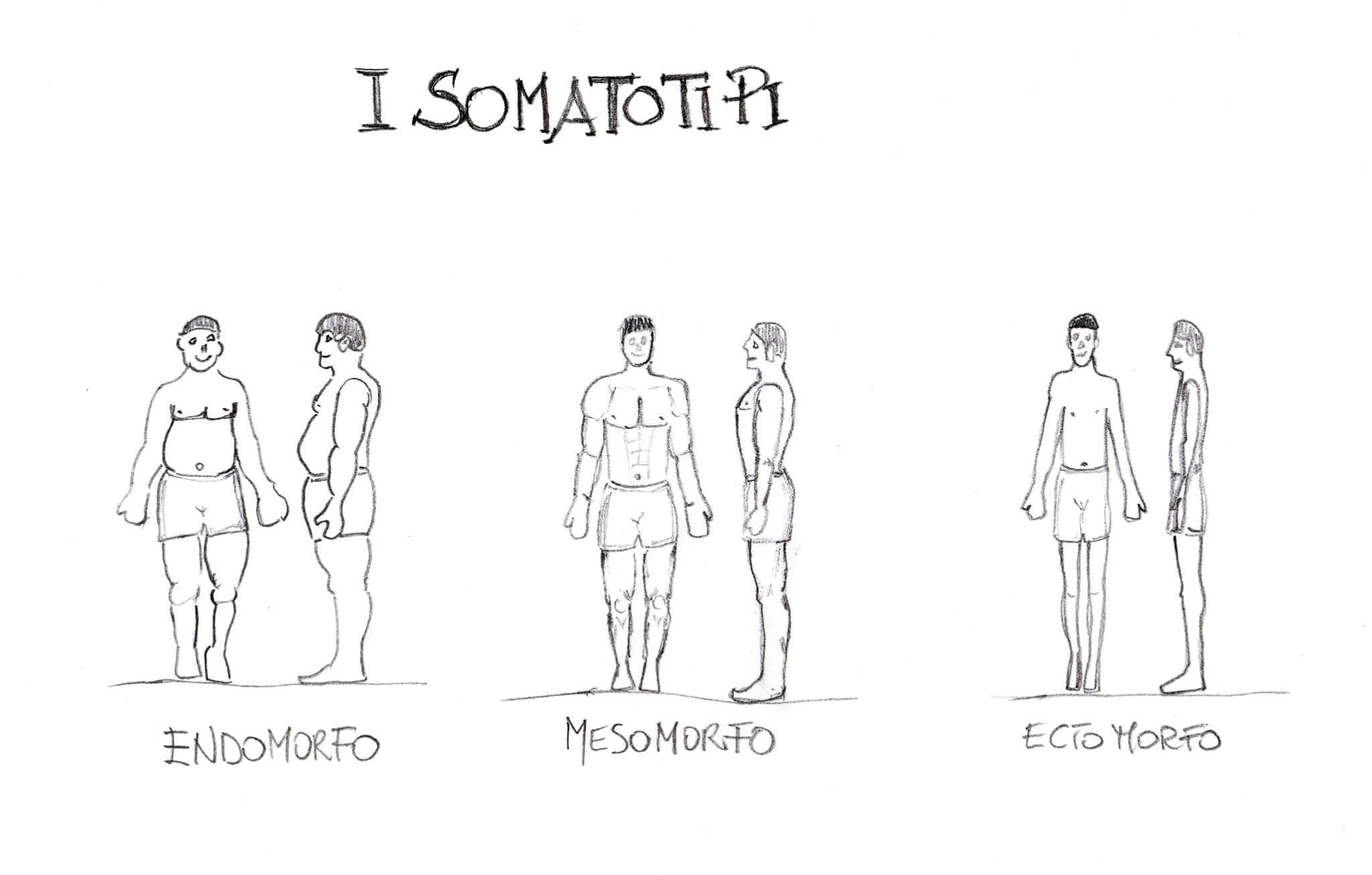 Somatotipo e Somatocarta: l'utilizzo nella composizione corporea