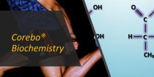 Acido lattico: a cosa serve davvero?