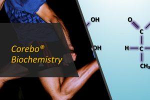 Acido Lattico – Corebo Biochemistry(R)