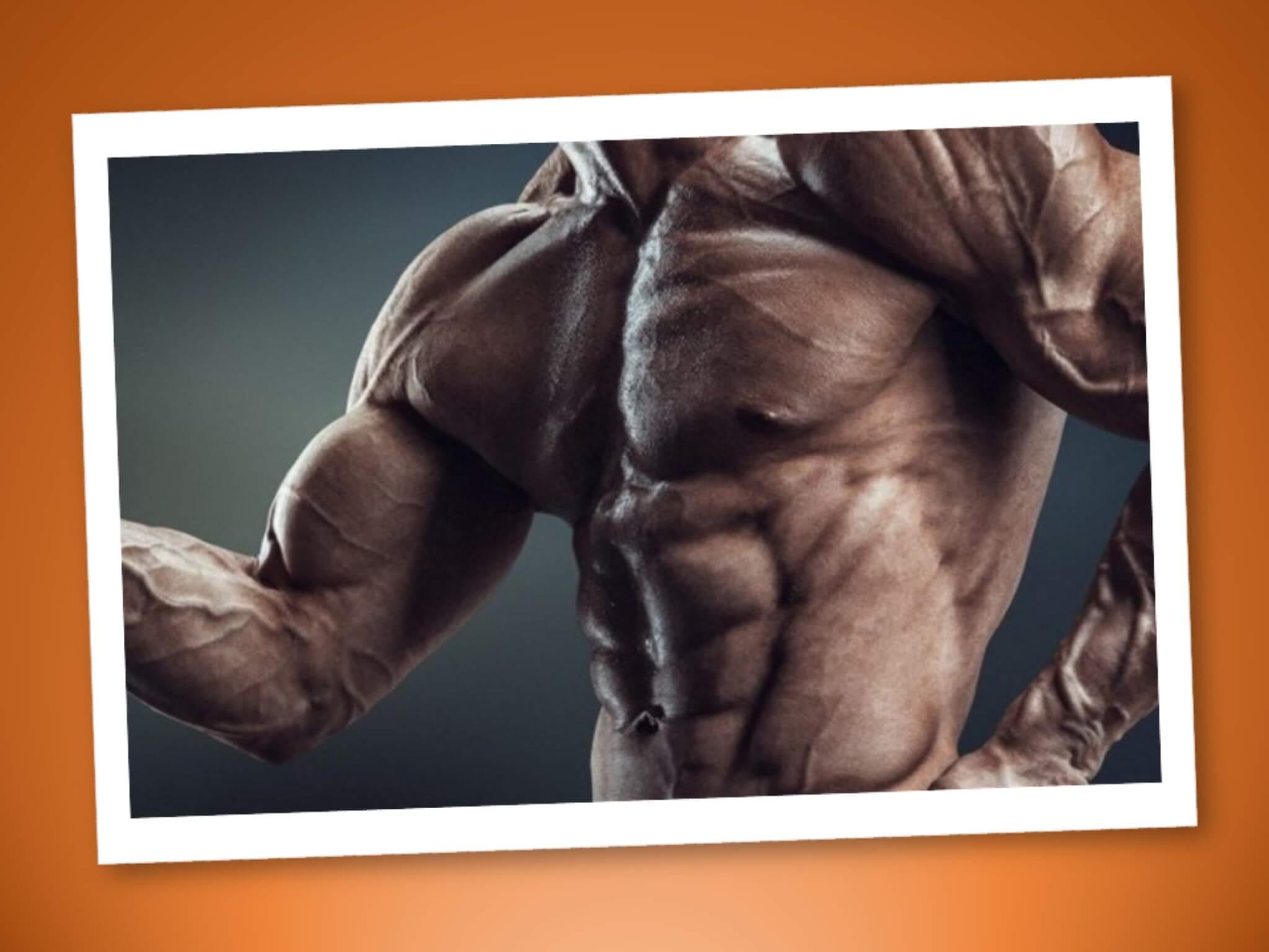 Tipi di contrazione muscolare, guida per neofiti