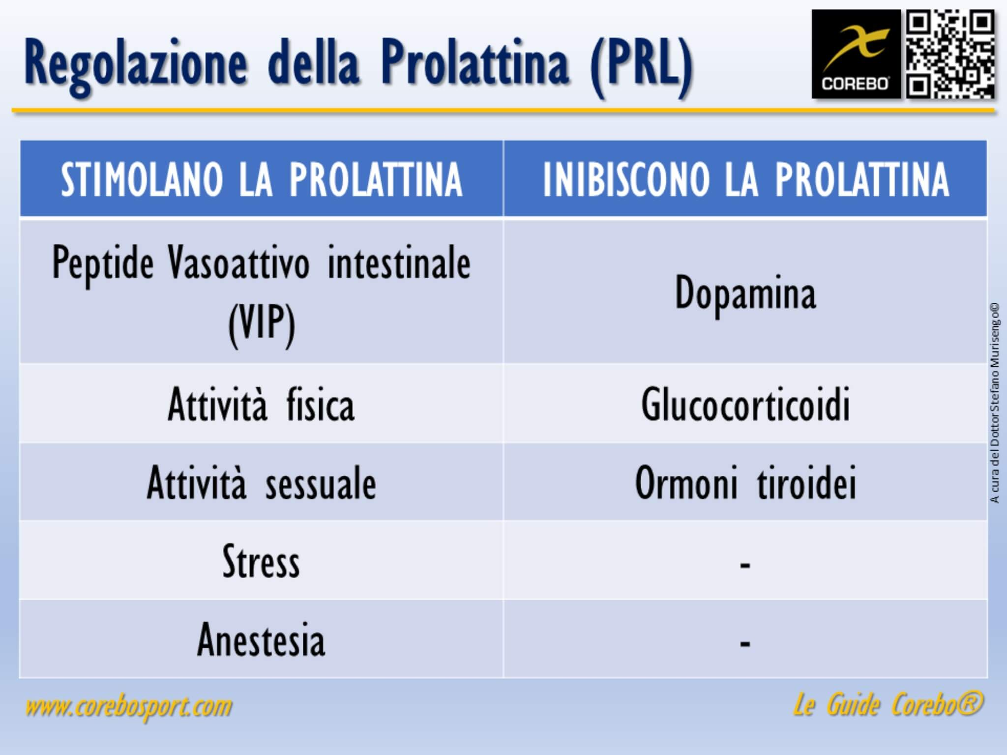 la prolattina