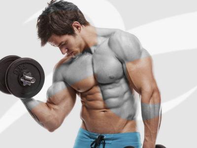 22, 23 settembre – TORINO – Istruttore Bodybuilding
