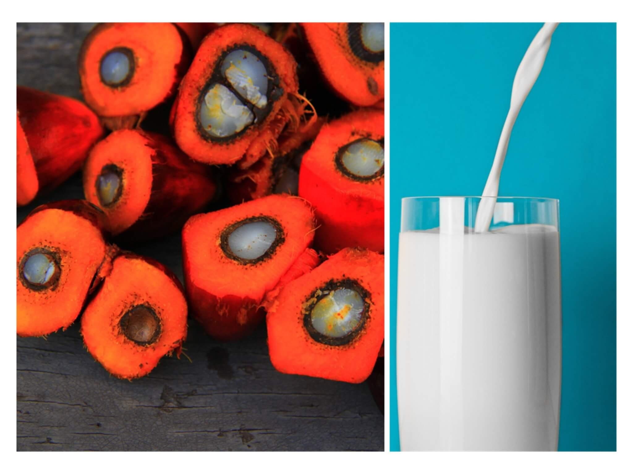 Allarmismo alimentare: quali alimenti fanno male?