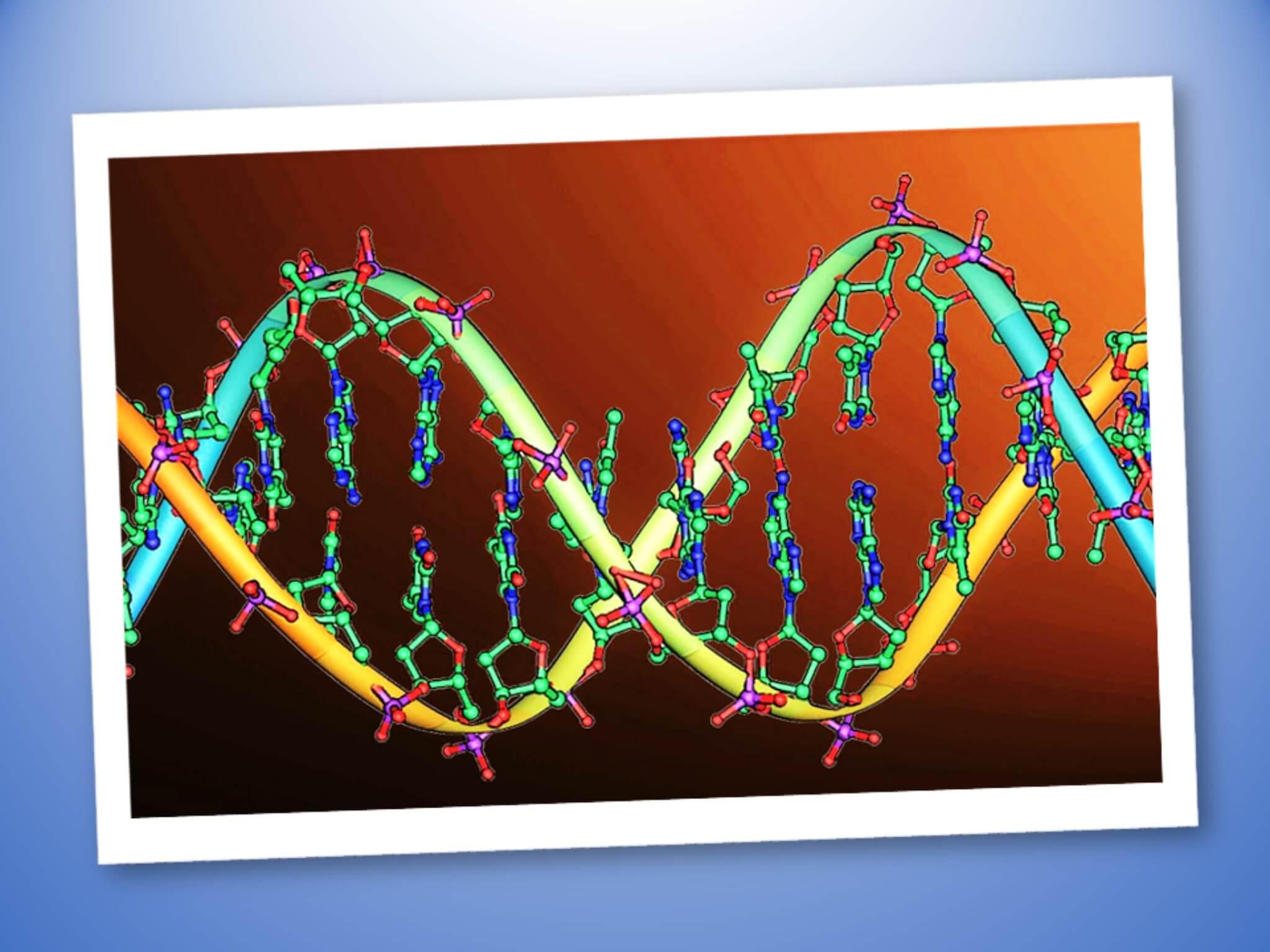 Codice genetico: che cos'è e come ci influenza