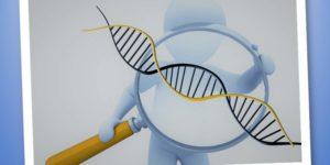 Polimorfismi e sport: conoscere il nostro DNA