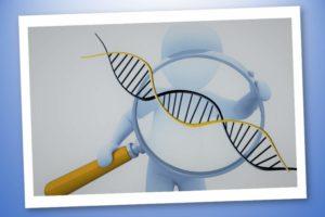 Polimorfismi e sport – Conoscere il nostro DNA- Corebo(R)
