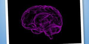 Sistema Nervoso e Affaticamento