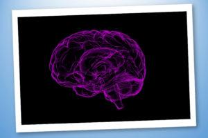 Sistema Nervoso & Affaticamento