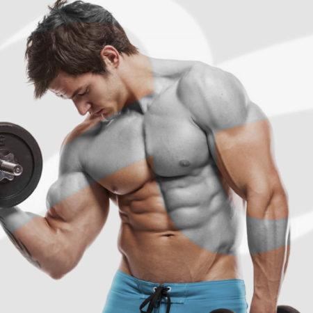 Corso Istruttore di Bodybuilding