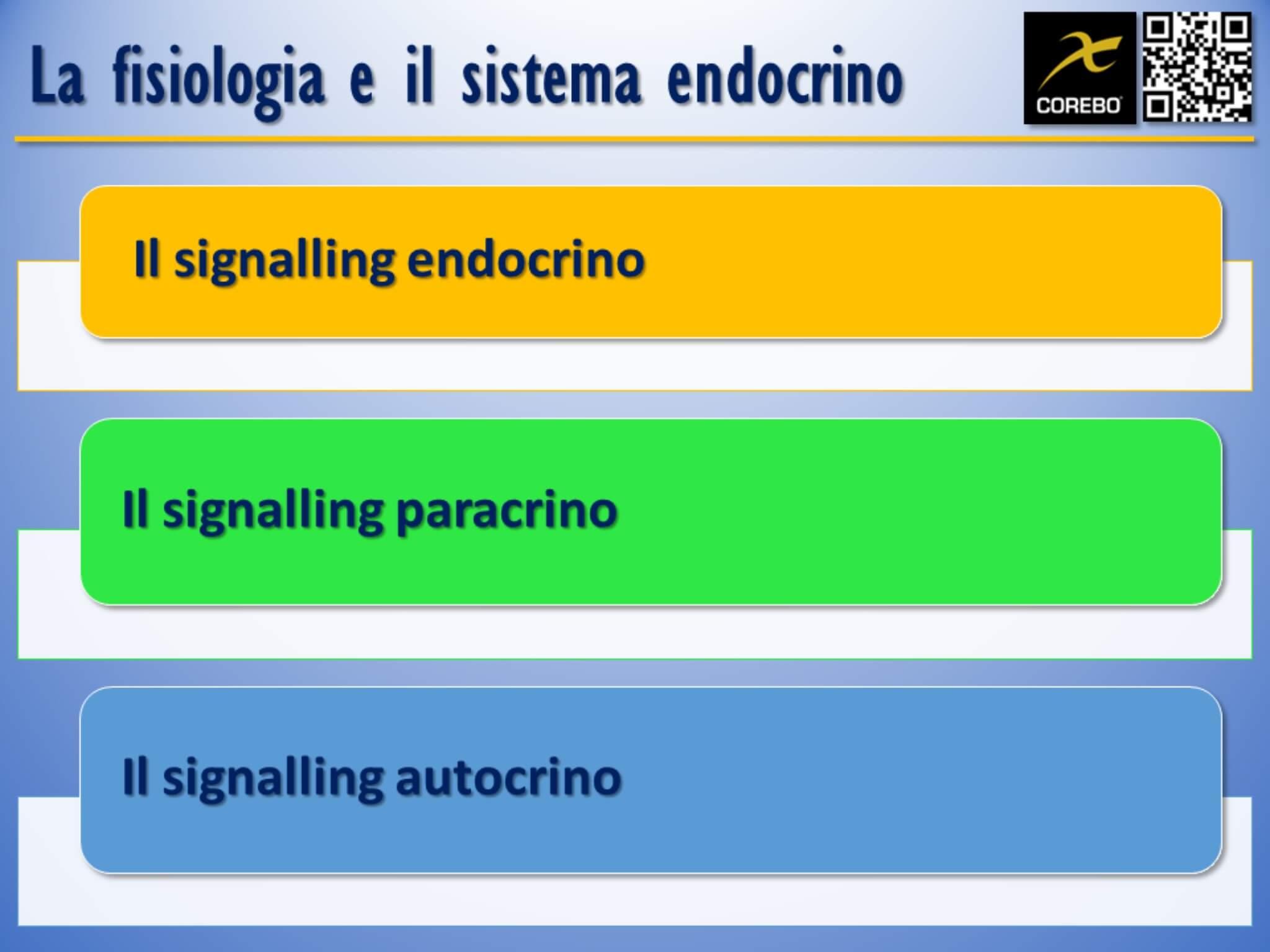 la fisiologia
