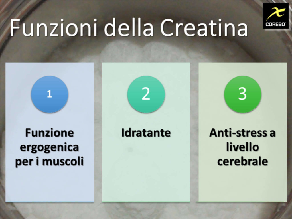 creatina a cosa serve