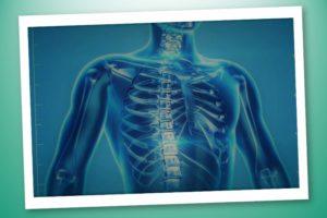 Osteoporosi cos'è e quali sono i fattori di rischio – Corebo(R)