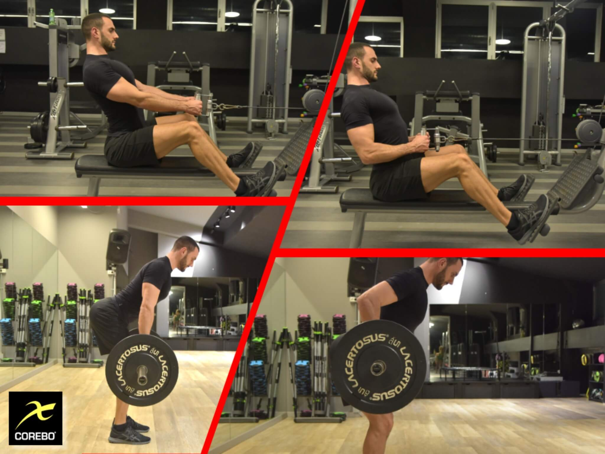 allenare i dorsali