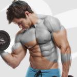 11, 12 maggio – TORINO – Corso Istruttore Bodybuilding