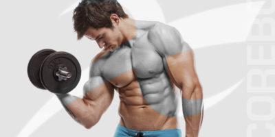Corso Istruttore Bodybuilding