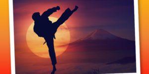 Modello prestativo del Karate: cosa devi sapere