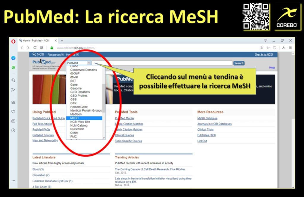 la ricerca Medical Subject Headings
