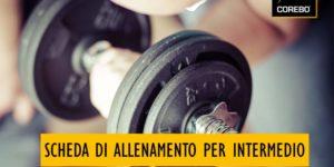 Scheda di allenamento per intermedio: la guida