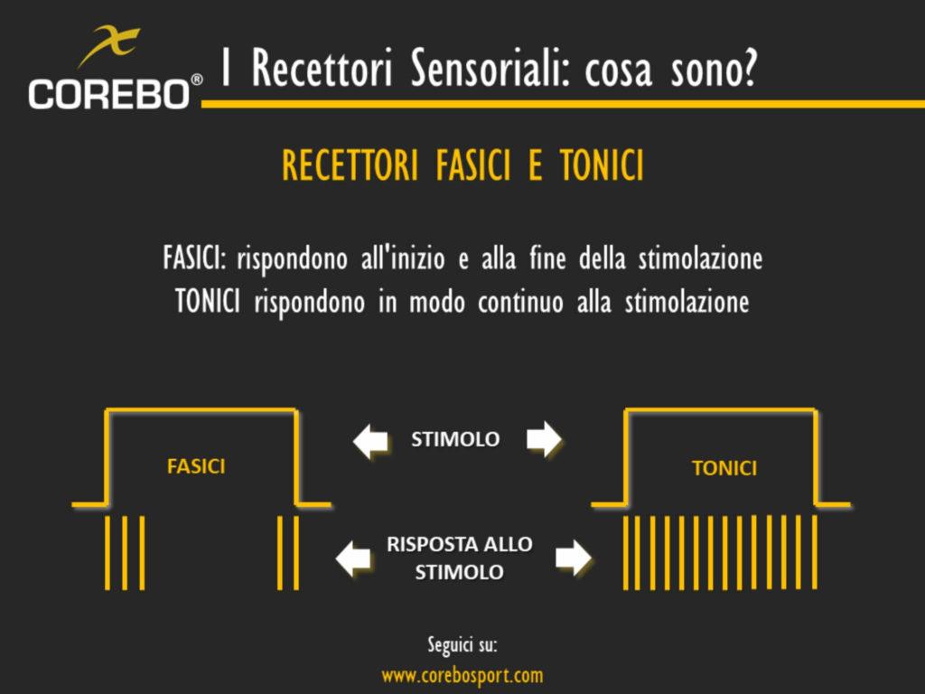 recettori sensoriali