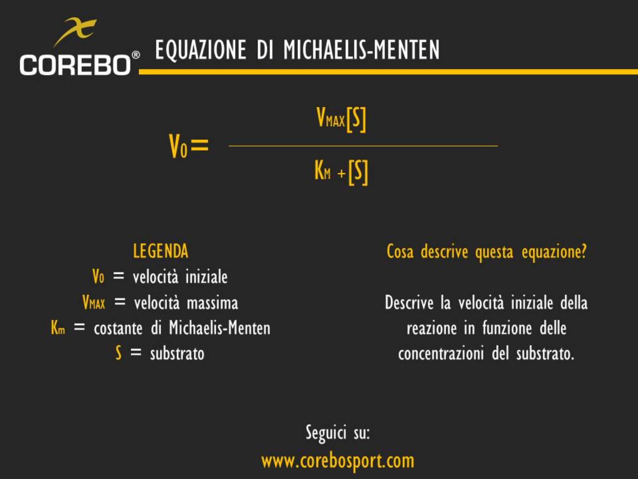 equazione di michaelis menten
