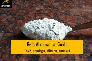 Beta-alanina – Corebo