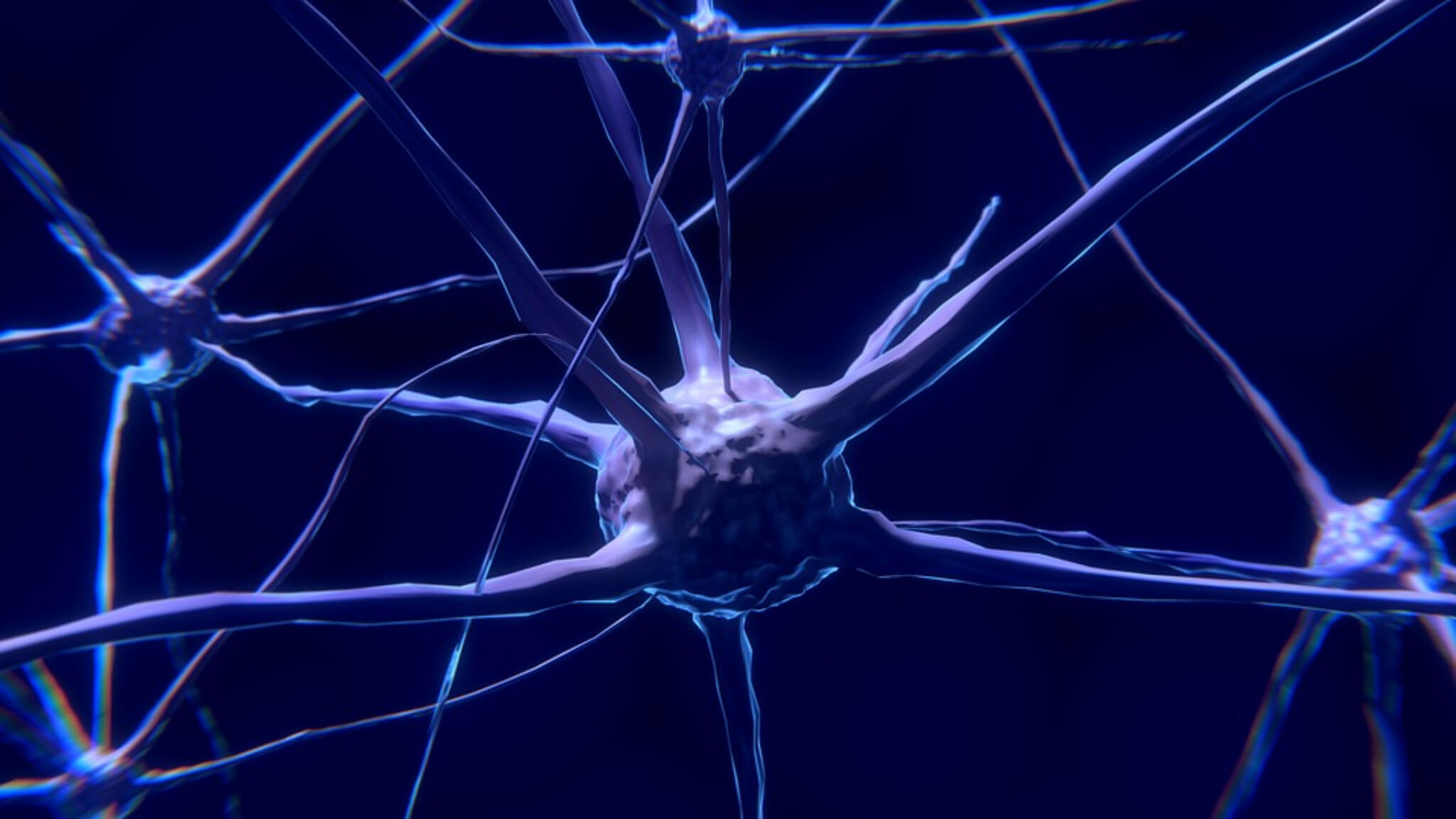 sclerosi multipla ed esercizio fisico