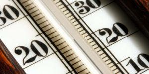 Che cos'è la regola RGT e come influenza il nostro metabolismo