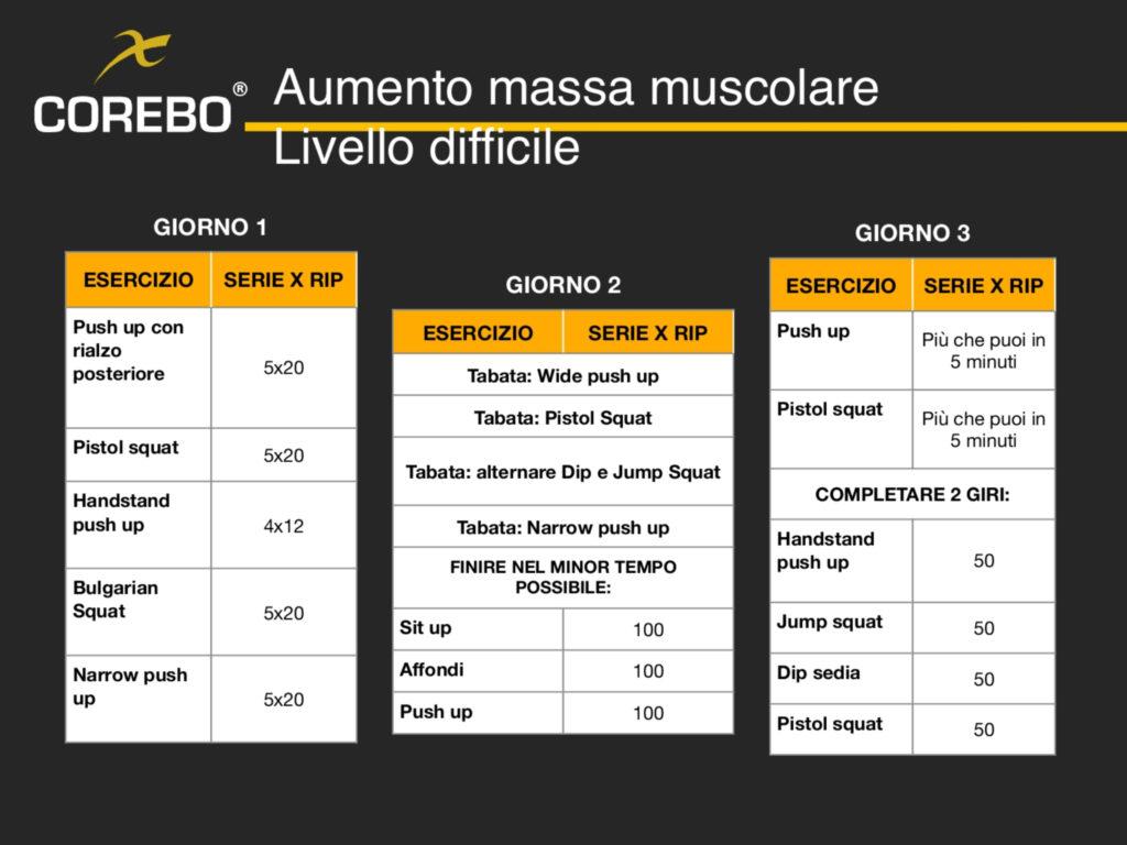 Schede allenamento a casa massa muscolare livello difficile