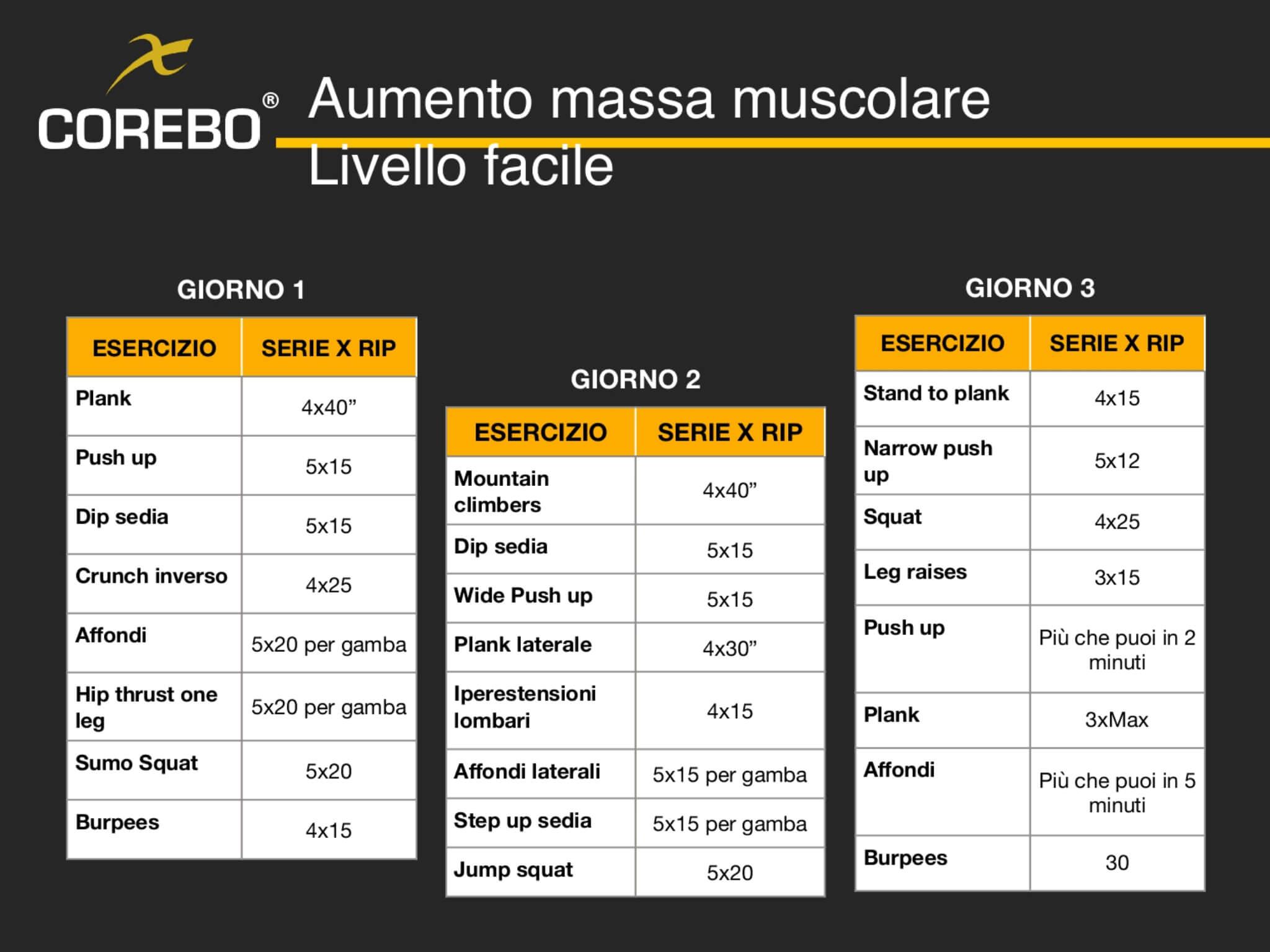 Schede allenamento a casa aumento massa muscolare introduttivo