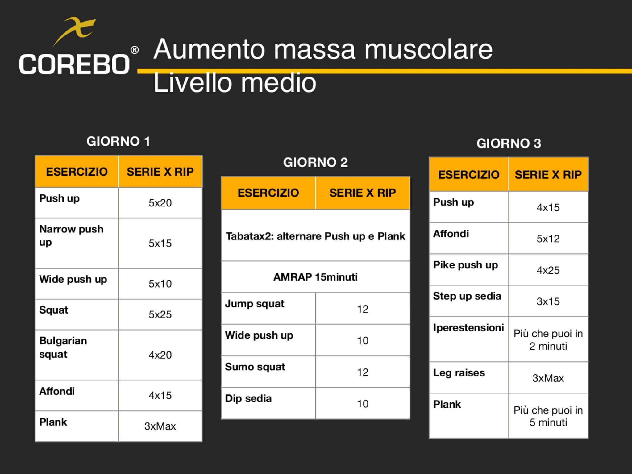 Schede allenamento a casa aumento massa muscolare intermedio