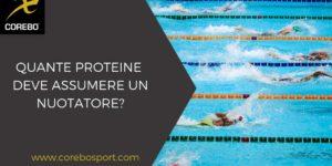 Quante proteine deve assumere un nuotatore?