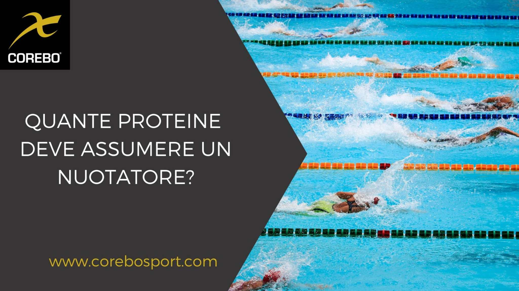 quante proteine deve assumere un nuotatore