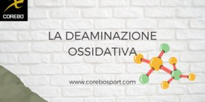 Che cos'è la deaminazione ossidativa e a cosa serve